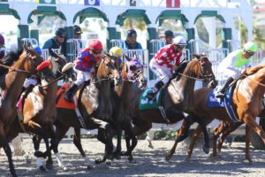L'Auberge Del Mar Sets Events for First Breeder's Cup at Del Mar Race Track